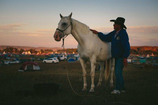 standing-rock-horse