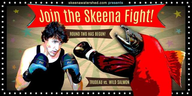 skeens-fight-cartoon
